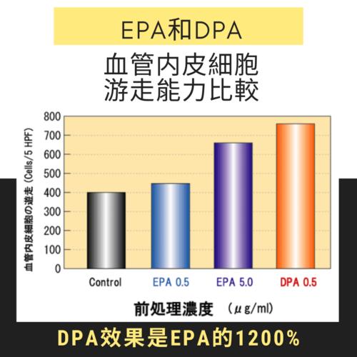 AmitA DPA具有促進血管內皮細胞游走功能