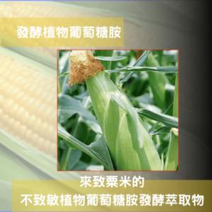 發酵植物葡萄糖胺