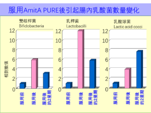 AmitA PURE 培養腸道益菌