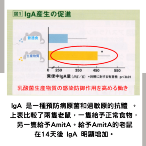 AmitA PURE 增強 IgA 抗體